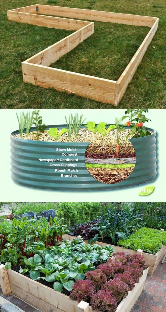Detailed Guide On How To Build Raised Bed Gardens Lots Of Tips And Ideas On Best Design Diy Raised Garden Vegetable Garden Design Vegetable Garden Raised Beds