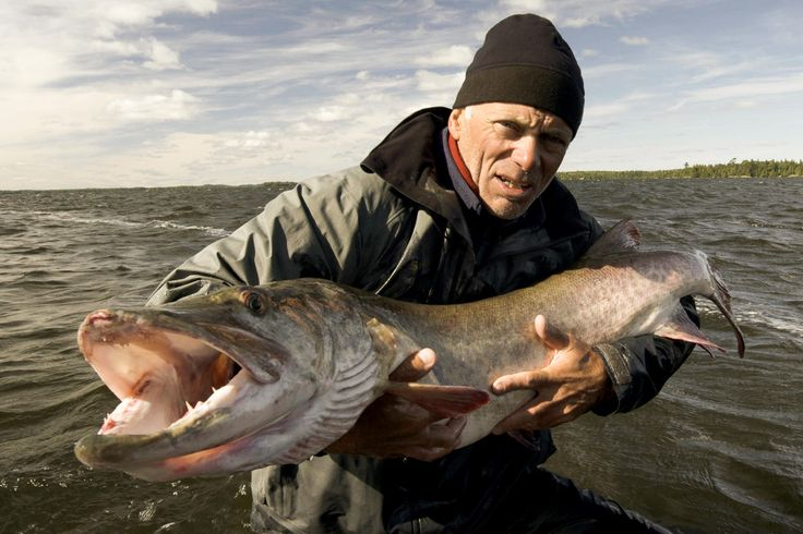 Jeremy Wade holding the Musky catch at Spirit Rock in Eagle Lake, Canada