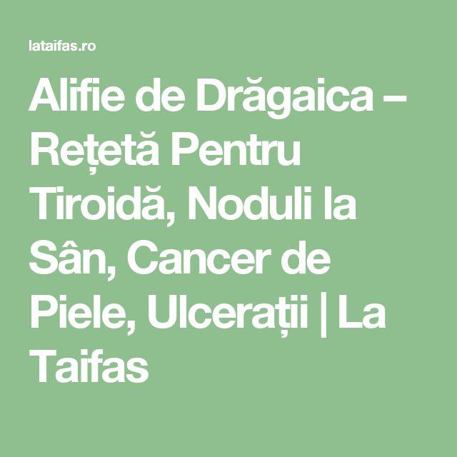 Alifie de Drăgaica – Rețetă Pentru Tiroidă, Noduli la Sân, Cancer de Piele, Ulcerații | La Taifas