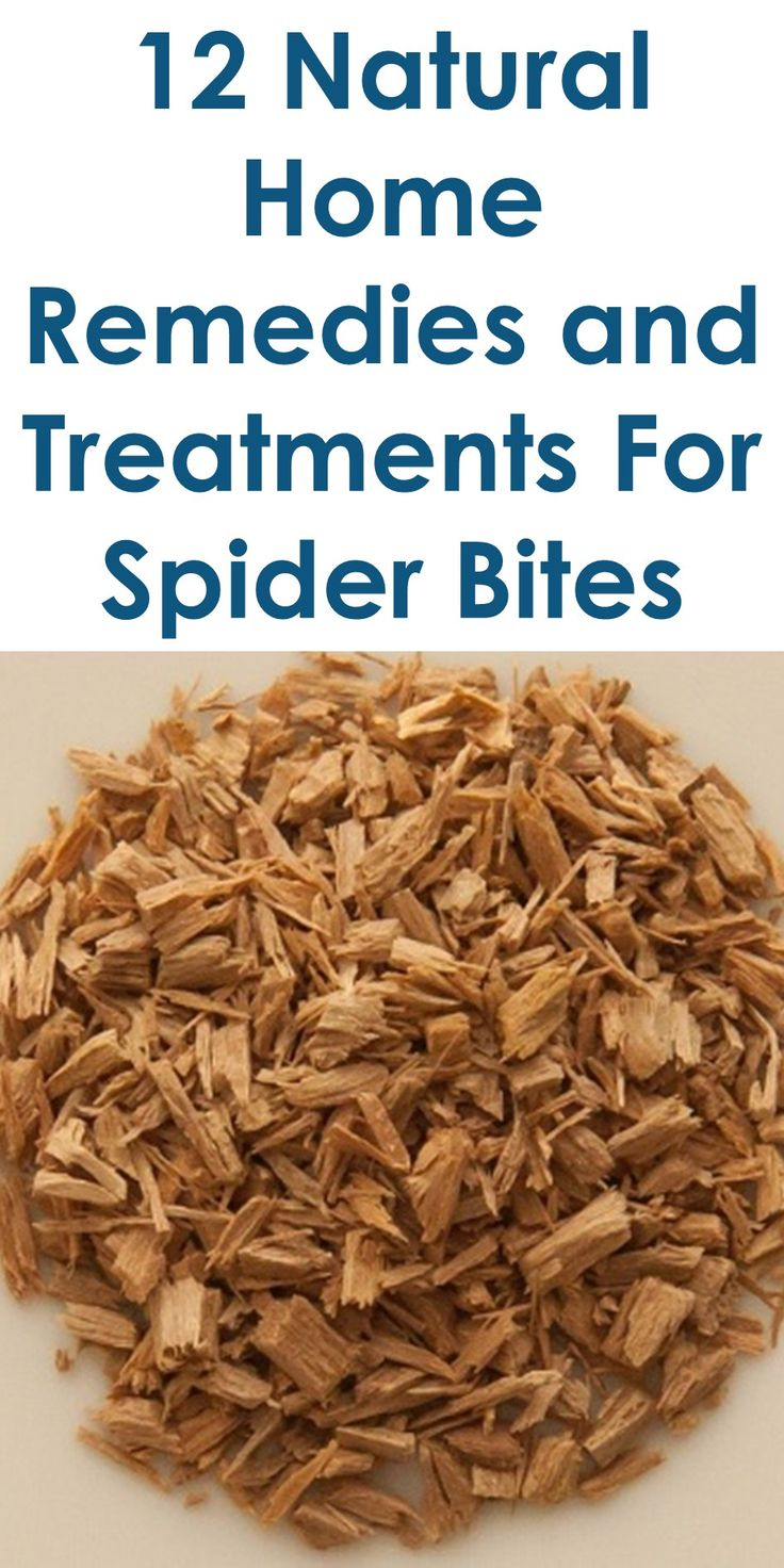 12 Natural Home Remedies and Treatments For Spider Bites | In The Guide Above, You Will Learn The Following; How To Get Rid Of A Spider Bite Overnight, How Long Does A Spider Bite Take To Heal, Spider Bite Treatment Baking Soda, How To Make Spider Bites Go Away, How To Identify A Spider Bite, Spider Bite Treatment Antibiotics, Spider Bite Monitoring For Changes Or Improvement, Spider Bite Treatment At Home, Etc.