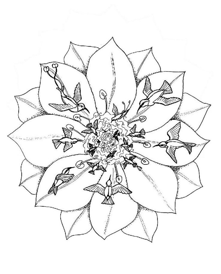 Animal Mandalas To Print And Color These Are A Great Way Focus Attention Center Yourself You Live Find The Best Mandala Coloring