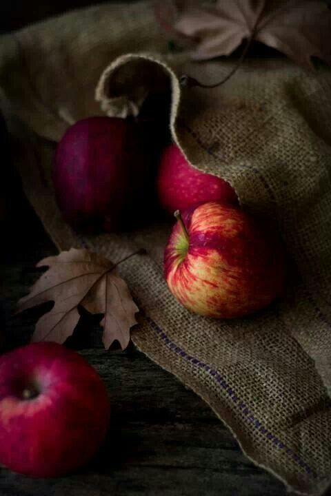 Apples and Burlap photography | still life | color | contrast | texture…