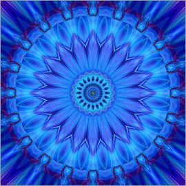 20 % RABATT auf Alu-Dibond-Bilder! Code: PLALU20 – gültig bis 11.09.2016 Christine Bässler - Mandala blaue Wasserblume