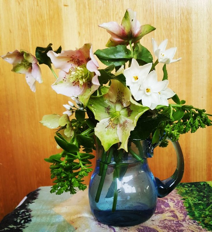 Weekly posy - heliobore, succulent, paperwhite jonquil