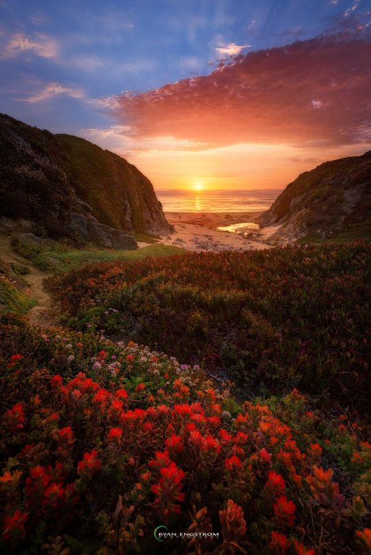 Path to Paradise on 500px by Ryan Engstrom, Gilroy, USA