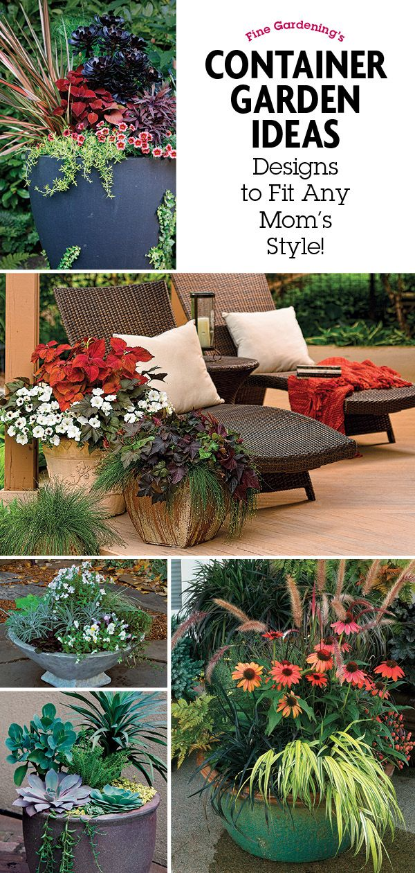 Designing Great Containers 8447 best Container Gardening