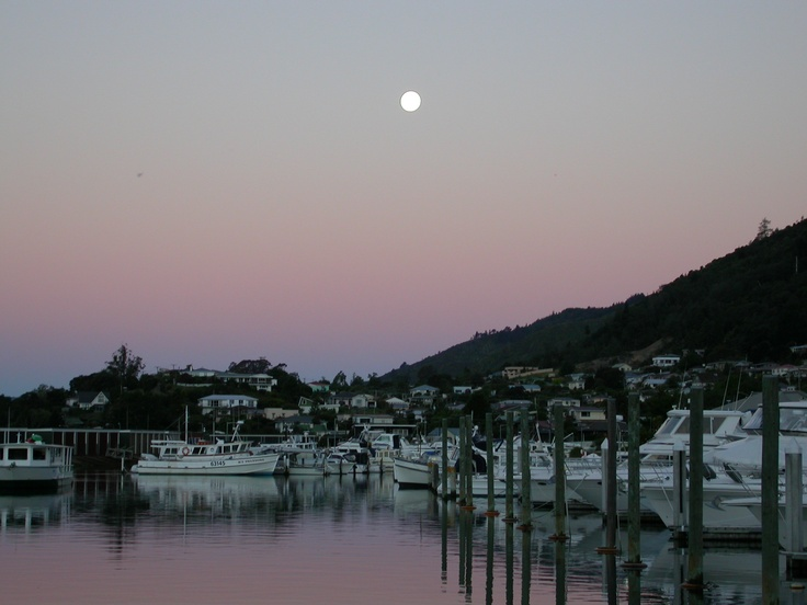 moonlight over the harbour in front of the house
