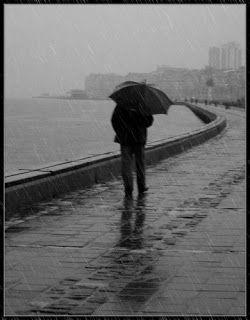 Lluvia acida (acid rain)