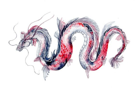 Koi Dragon  Watercolor Art Print  8''x10''' koi fish by Goosi
