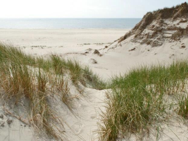 door de duinen Den Helder