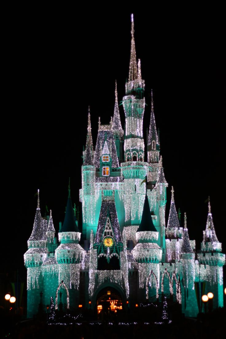 44 Best Christmas In Florida Images On Pinterest Xmas