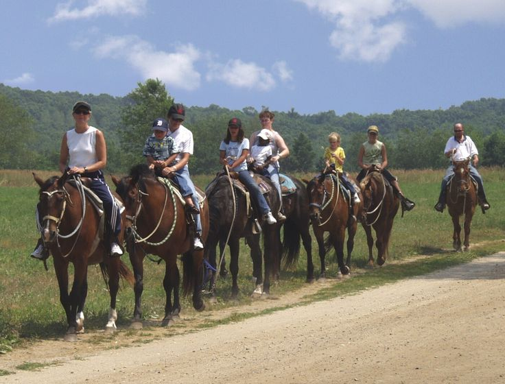 enjoy some amazing views by horse riding!