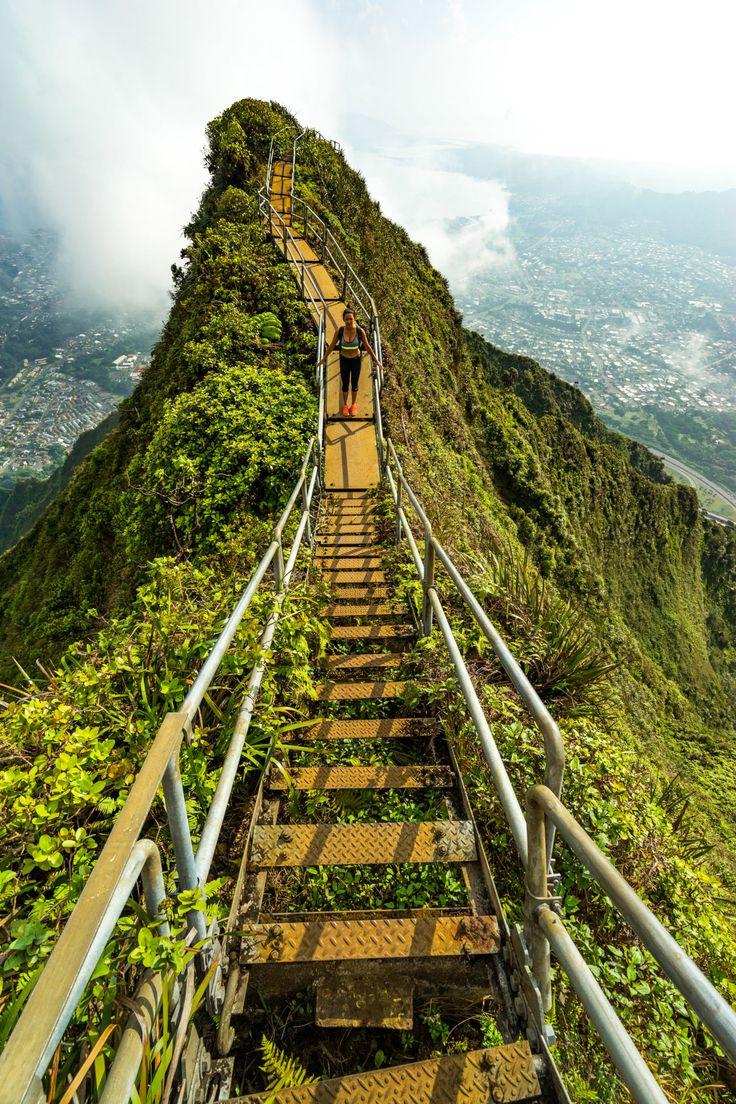 Best 25+ Stairway to heaven ideas on Pinterest | Stairway ...
