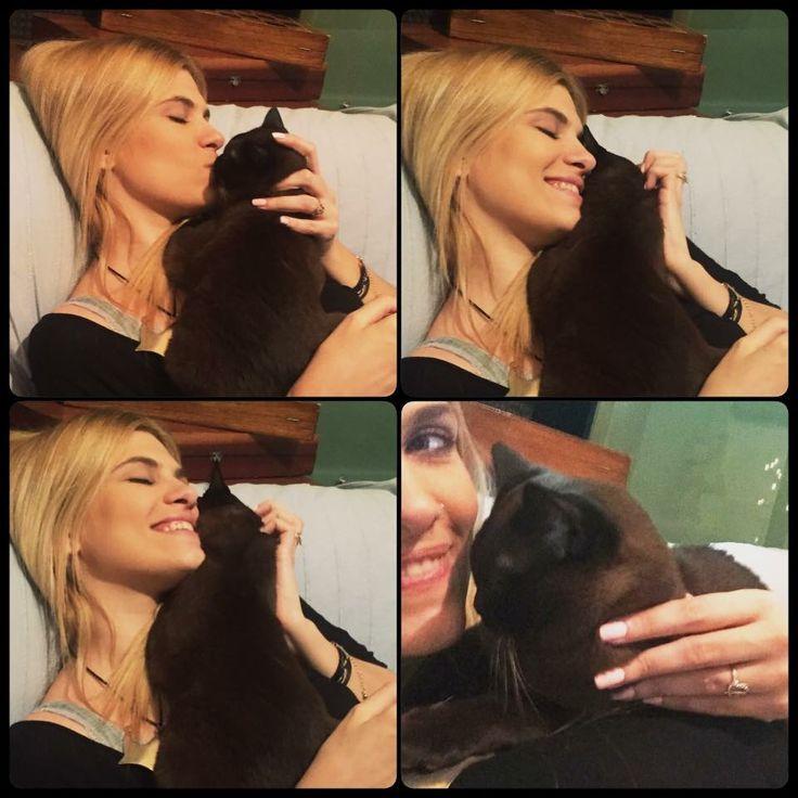 My sweet Satanka 🐈😍❤️ #mamasboy #lovehim #somuch #silkysensefamily #burmeseboy #burmeseking #burmesecats #burmeselove #lovemyfurkids #lifeisbetterwithcats 🐾🐾🐾🐈🐈🐈❤️❤️❤️🐱🐱🐱😘😘😘