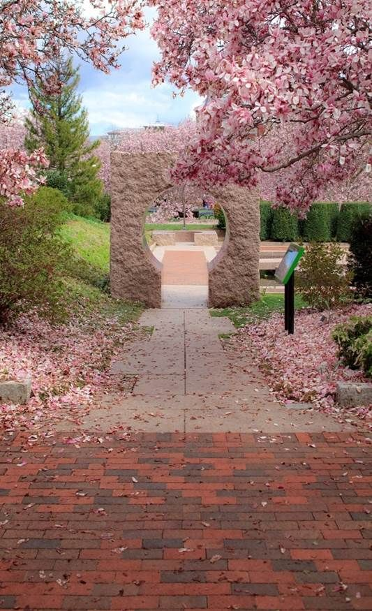 Pink granite circles & squares frame contemplative space in the Moongate Garden in the Enid A. Haupt Garden