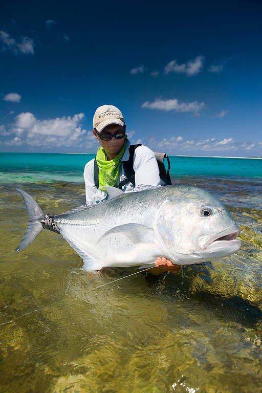 58 best trevally images on pinterest fishing fly for Saltwater fishing basics