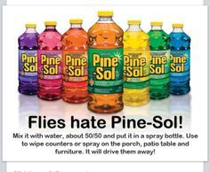Keep Flies Away with Pine sol