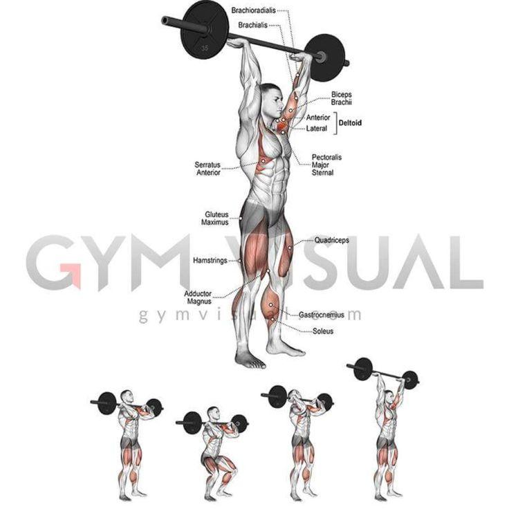 Vistoso Kettlebell Swing De La Anatomía Elaboración - Imágenes de ...
