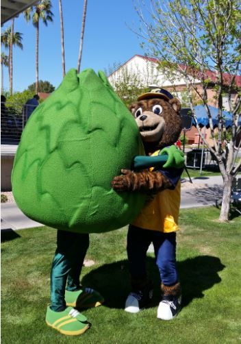 Hug it out! SCC's mascot Artie Artichoke was invited to join Phoenix College's mascot Bumstead Bear at his 95th birthday party March 9, 2016! Needless to say, the two best friends had a BLAST!