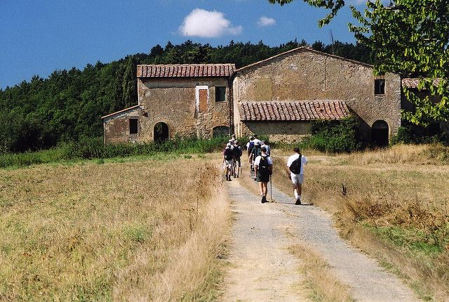 Walking in the Montaione countryside #viafrancigena