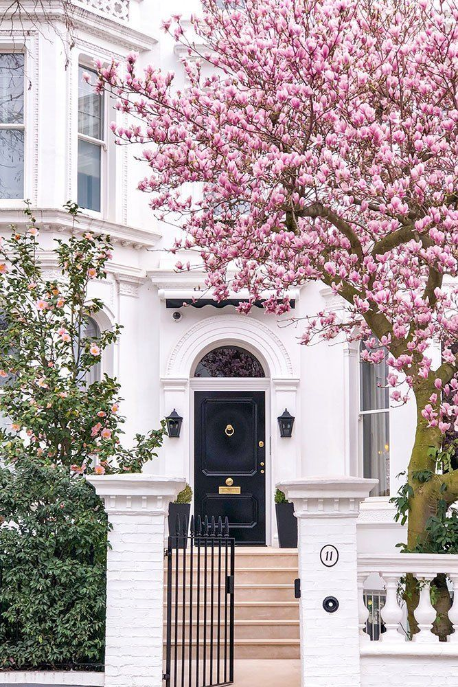 Where To See Magnolia And Cherry Blossom In London Printable Guide And Map London House London Townhouse Design
