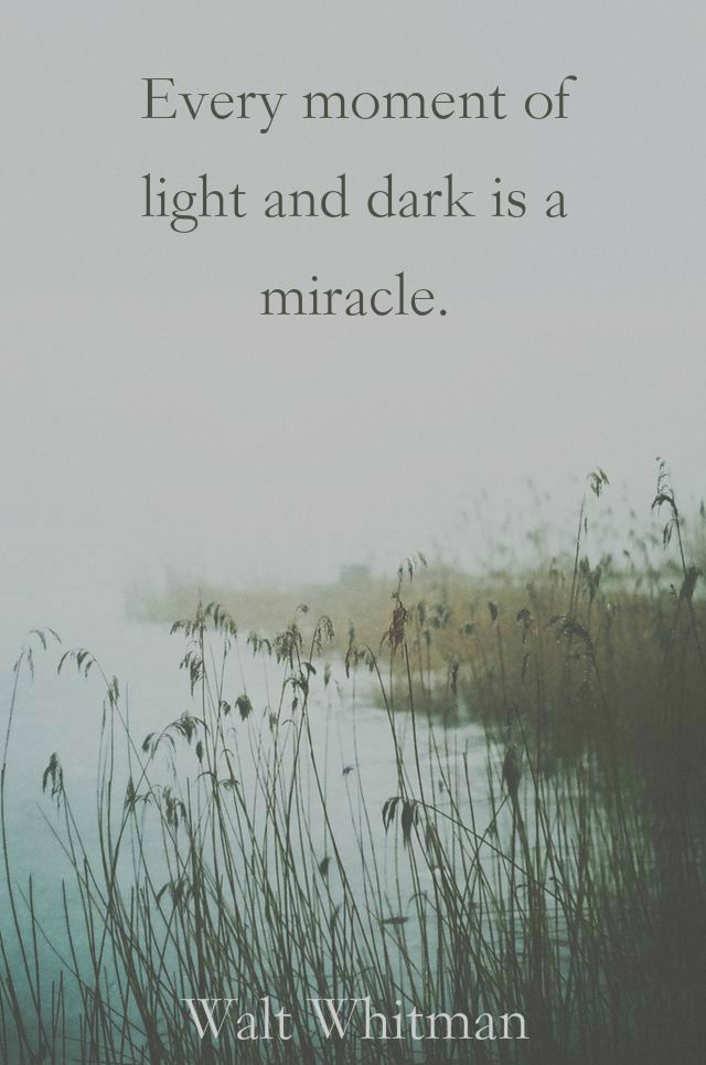 """Every moment of light and dark is a miracle.""  ― Walt Whitman"