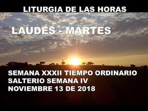 El Rincon De Mi Espiritu Laudes Martes 13 De Noviembre De 2018