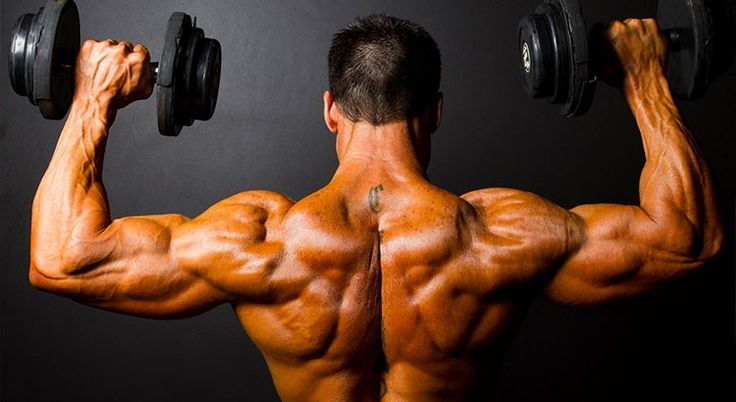 La musculation à domicile de plus en plus prisée !