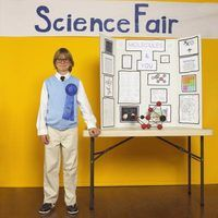 Tri-fold boards are a science fair staple.