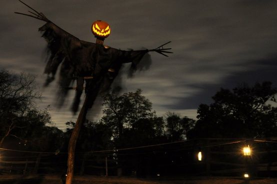 More Scary DIY Outdoor Halloween Decorations » Inspiring Pretty - Frighten the new generation with your own headless horseman. With some branches, string, fabric and of course, the flaming pumpkin, you can make your terrifying scarecrow. The taller, the better. That just mean it's higher for them up to gaze up, which makes it all the scarier.