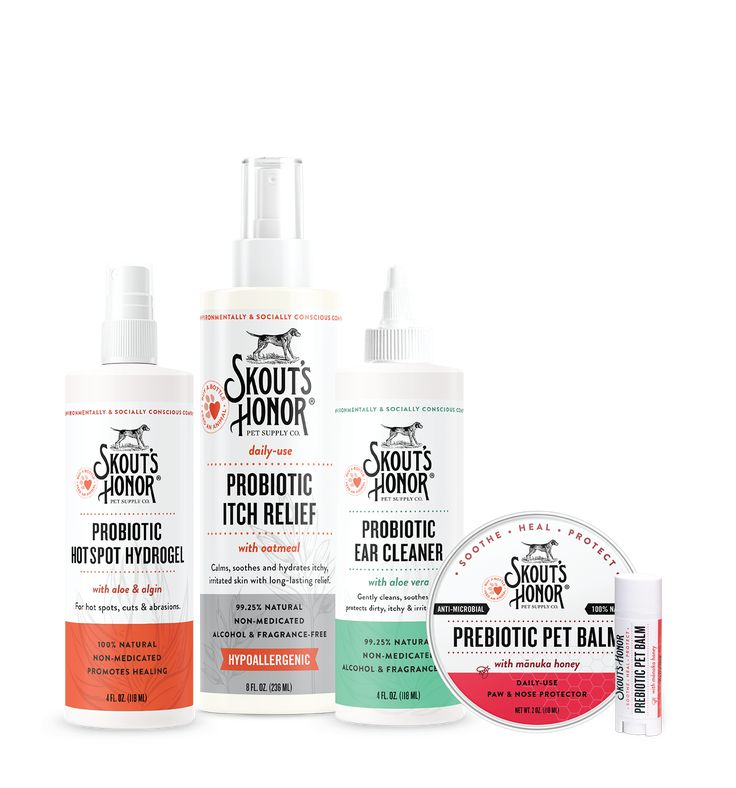 Probiotic Wellness Kit for Dogs & Cats | Wellness kit, Dry