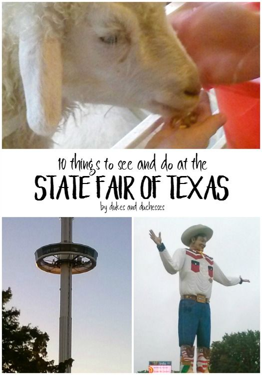 Best TEXAS Dallas Images On Pinterest Fort Worth Travel - 10 things to see and do in dallas