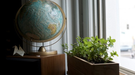 How to Bring Your Garden Indoors