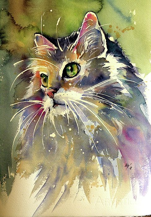 Beautiful Cat Painted In Watercolor Cats Large And Small