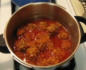 "Pressure Cooker Porcupine Meatballs  1 lb ground meat  1 cup of long-grain minute rice  1 slightly beaten egg  ½ t. salt  1 T Italian Seasoning  1 clove of garlic  ½ t onion powder  1/8 t black pepper  1 regular can condensed tomato soup  1 ½ cans water   mix all ingredients together except the soup and water. Roll mixture into 2"" balls.  Place incold pressure cooker. Add soup and water. No need to stir. Cook over high heat.  Once pressure has been reached, allow to cook for 8 minutes."