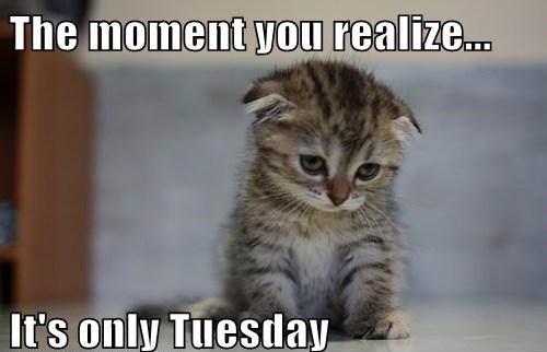 The moment you realize… It's only Tuesday