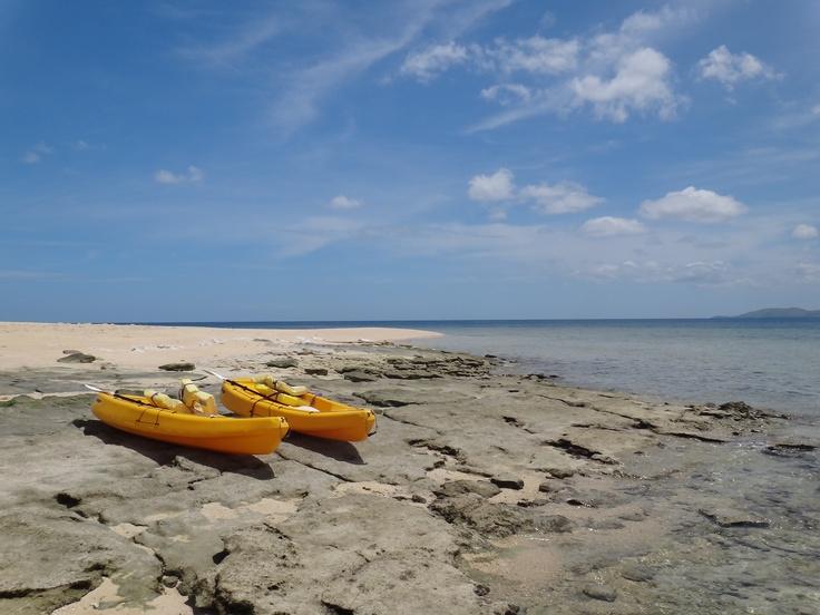 Fiji Savala Island