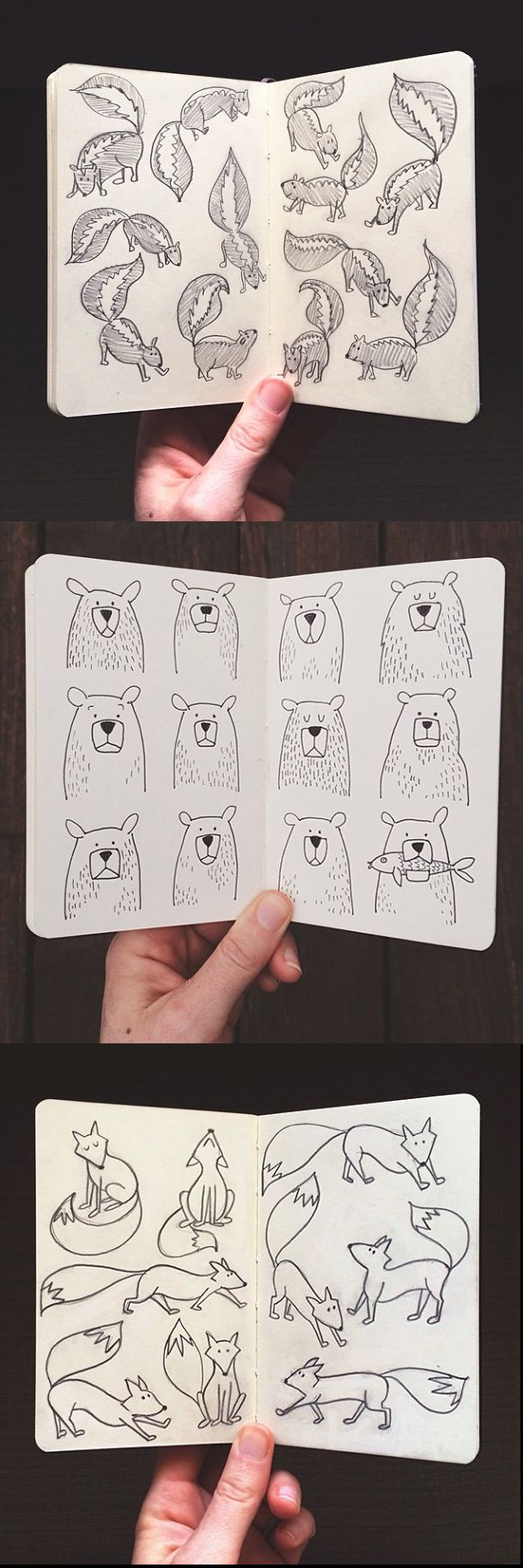 Illustration | doodle inspiration - skunks, bears, foxes
