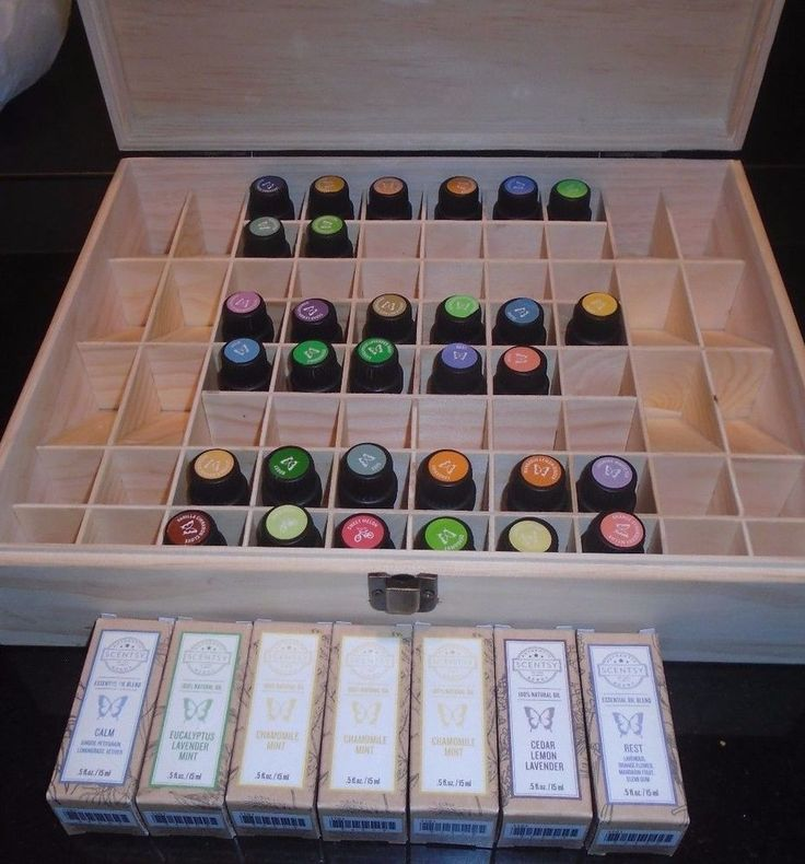 Scentsy HUGE LOT Scentsy Essential Oils Chamomile Mint Essential Oil BOX #Scentsy