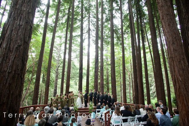 amphitheatre of the redwoods at pema osel ling wedding and event venue santa cruz mountains ca