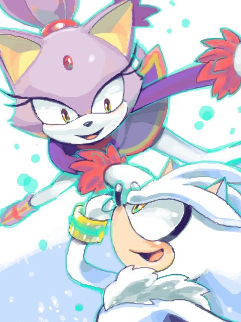 17 best images about sonic the hedgehog on pinterest for Immagini di blaze