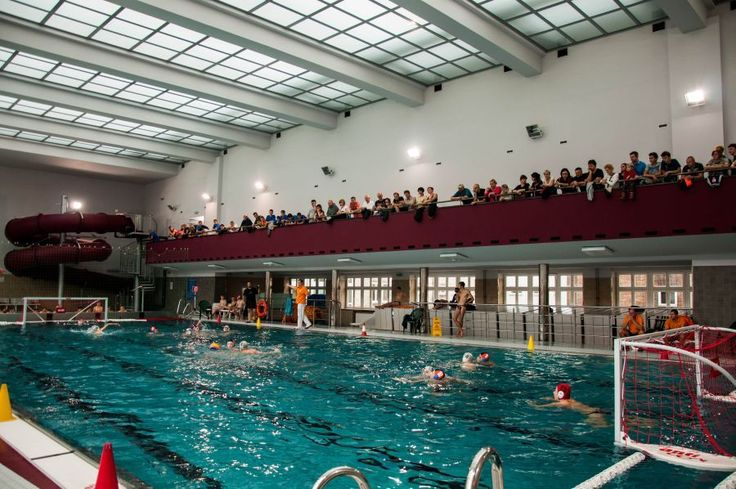Turniej Piłki Wodnej | basen miejski |ul. Parkowa 2 |fot. Natalia Bojanowicz