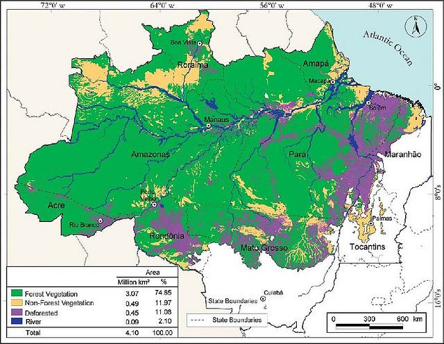 Deforestation In The Amazon World Th Board Pinterest - Norway map amazon