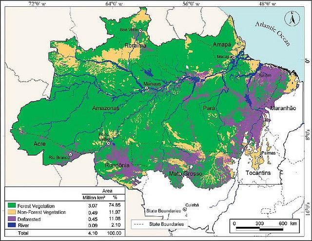 The 25+ best ideas about Amazon Rainforest Deforestation ...