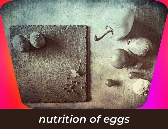 Bill Nye Nutrition Quizlet - Propranolols