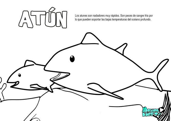El Atun, Dibujos Colorear Peces. Recursos Educativos