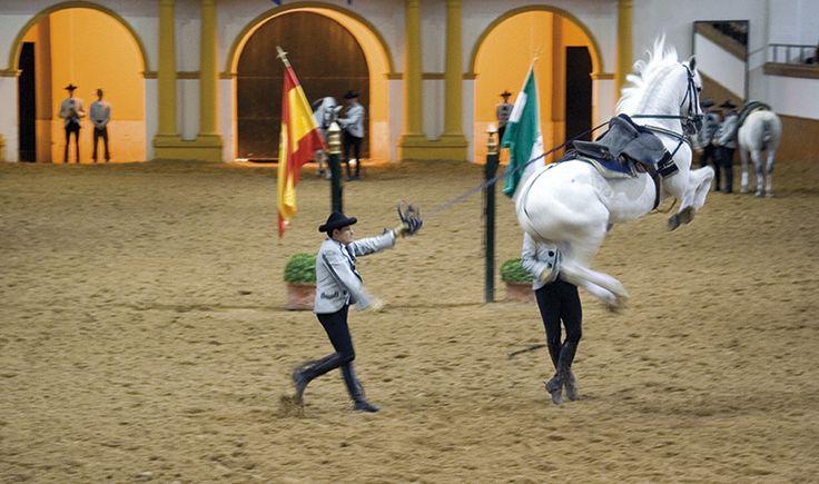 Den Kongelige Andalusiske Rideskole i Jerez, Spanien