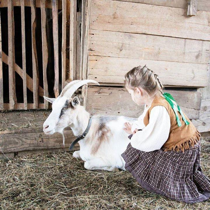 Celý náš výlet na východe Slovenska bol spojený so samými zvieratkami. Na farme sme boli obkolesené psíkmi  kravičkami  koníkom  mačičkami  kozičkami  ovečkami  aj morkami . A túto starú kozičku sme si veľmi obľúbili lebo bola úžasne priateľská a prítulná .  #praveslovenske od @kiarablogsite