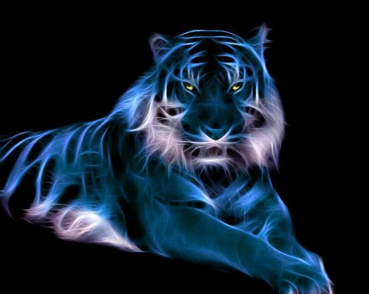 fractals tigers and tiger painting on pinterest