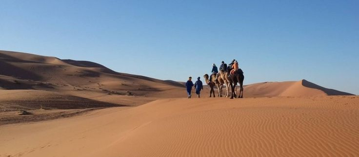 #LuxuryTripMorocco can give you to explore this magnificent desert landscape. Know more @ http://camelsafaries.livejournal.com/3205.html